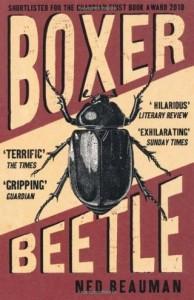 Boxer Beetle